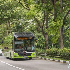 Bus Service 973